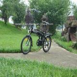 Elektrisches Fahrrad des populären ' Minifalz-20 für Kinder