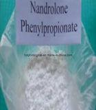 CAS 62-90-8の高品質の注射可能なステロイドのNandrolone Phenylpropionate