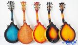 Mandolin Maw006 Китая Aiersi твердый верхний двойной Cutway акустический