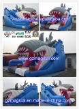 Il parco di divertimenti animale commerciale scherza la trasparenza gonfiabile del coccodrillo adulto (RA-042)