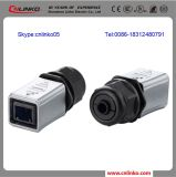 Dust Cap를 가진 IP65 CAT6 Waterproof RJ45 Connector