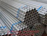 Carbono Q235 S235jo Pre-Galvanizado em volta da tubulação de aço para o edifício de aço