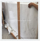 Bovenkant en Countertop van de Ijdelheid van het Zinkwit de Marmeren (Wit marmer)