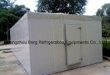 Promenade modulaire commerciale dans le réfrigérateur