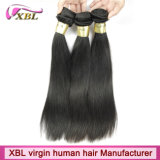 Capelli umani brasiliani Weavon del Virgin di Xbl