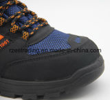 Zapatos de seguridad de acero de la punta con ISO, certificación del Ce aprobada