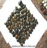 しまのある磨かれたモザイク小石のタイル