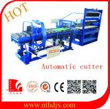 Machine de fabrication de brique complètement automatique de la Faire-dans-Chine