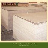 Furniture Decoration를 위한 유칼리나무 Core Larch Plywood