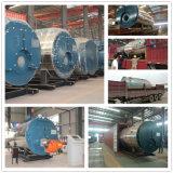 Type 1-25 de tube d'incendie de chaudière à vapeur d'eau chaude de Tph de chaudières de gas-oil carburant diesel industriel de gaz naturel de LPG