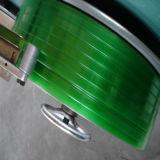 De in reliëf gemaakte Groene Band van de Riem van het Huisdier