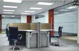 Vierkante Slanke LEIDENE Downlight 300X600mm Verlichting van het Plafond van de Lamp van het Comité de Dunne Lichte 36W