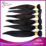 6A Unprocessed Peruvian Virgin Human Hair Stright Hair Weft