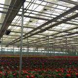 Парник многофункционального высокого качества Китая низкой стоимости стеклянный для цветка