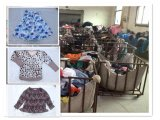 Erste Klasse Wholesale Used Clothing, Used Clothes in Bales From China, Hot Sell Second Hand Clothes (FCD-002)