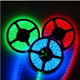 striscia verde di 60SMD3528 4.8W/M LED