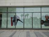 Mur en verre fixe de la qualité Kz054