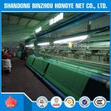 Filet de sécurité vert d'échafaudage d'aperçu gratuit pour l'usine de professionnel de construction