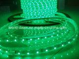 Ce contabilità elettromagnetica LVD RoHS due anni della garanzia 220V LED di indicatore luminoso della corda