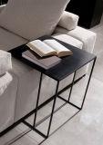 側面表が付いている簡単なモデル木製のコーヒーテーブルはセットした(CTS-012)