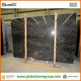 Granit indien normal de Brown de saphir pour Countertops&Tiles