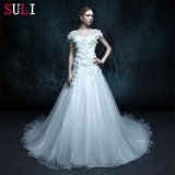 A Line Real Photo Backless Appliques Wedding Dress (ZXB-23)