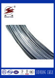 ACSR/AAAC/AAC를 위한 Acs-Aluminum Clad Steel Wire