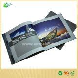 Impresión del compartimiento/del Hardcover/del folleto de Cmyk con el precio bajo (CKT-NB-430)
