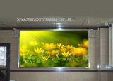 Parete esterna del video di colore completo LED di P16mm