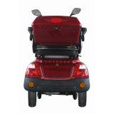 400W de Elektrische Autoped met drie wielen van de Mobiliteit