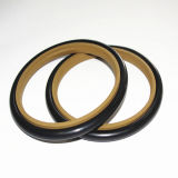 Mechanical Seals를 위한 청동색 Filled PTFE Rod Seals