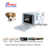 Gravidanza Animal Test di Ultrasound Scanner Doppler