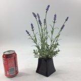 Plantas púrpuras artificiales de la decoración de la oficina de la lavanda