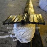 Ampoule centrale Waterstop en caoutchouc avec la qualité