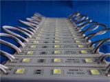 Impermeabilizar el módulo de 5050 SMD LED para hacer publicidad de la luz