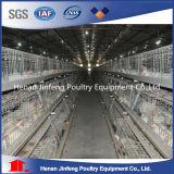 Equipamento quente/frio da exploração avícola do ovo da galinha da galvanização