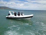 Liya 24.6FT 16persons motorisiertes aufblasbares segelndes Hypalon Rippen-Boot (HYP750)