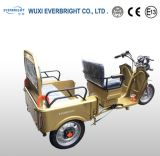 電気スクーターの電気三輪車、3車輪のスクーター
