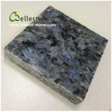 Wall Cladding와 Floor를 위한 중국 Beautiful Grey Blue Royal Blue Granite Tile