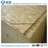Professional 1220X2440X6-25mm All Kinds of Grade OSB Fabricante de Weifang