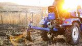 Traktor des Bauernhof-12HP/15HP/16HP kleiner 4wheel, Minitraktor