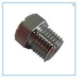 Edelstahl CNC-Präzisions-maschinell bearbeitenteil-Hex Schrauben-Mutter