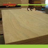 Bom Quality Many Types de Hardwood Plywood