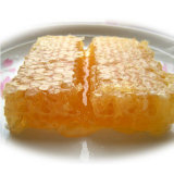 Cera de abelha com pureza 100%