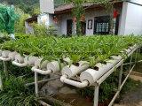 Pipe de l'irrigation PVC-U