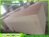Madera contrachapada comercial de Okoume del abedul de Kuering Bingtangor del cedro del fabricante/de lápiz de la madera contrachapada