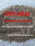 Qualitäts-Fischmehl (heißer Verkauf)
