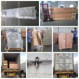 Chinesische Kissen-Form-automatische nasse Gewebe-Verpackungsmaschine