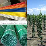 Jardín ligero de la fibra de vidrio FRP GRP, estaca de la planta para el soporte