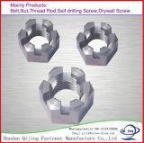 Hexagone de noix encoché par hexa d'acier inoxydable de M25 M26 M27 M28 M30 M32 A2 A2-70 A2-80 A4 A4-70 A4-80 Ss304 Ss316